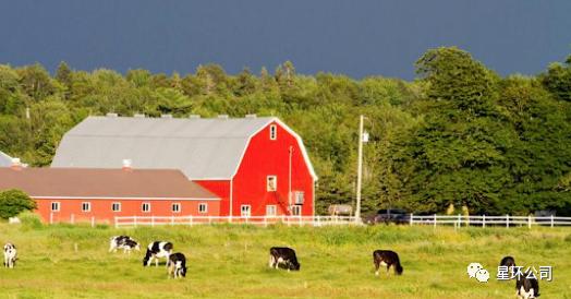 为何加拿大独创「农业试点移民」之先河?业内专家深度解读!